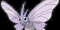 Venomoth (Pokémon)