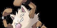 Primeape (Pokémon)
