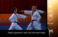 Koryo OutwardKnifehandStrike