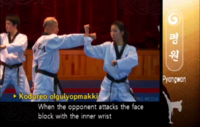 Pyongwon AugmentedHighSideBlock