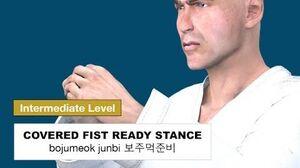Taekwondo 2D - Covered Fist Ready Stance ( 보주먹준비 bojumeok-junbi )
