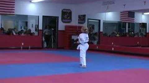 Chun Kuk Do UFAF 1 Slow Motion