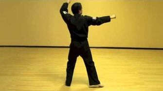 Wan Hyo (Step-By-Step) - Tae Kwon Do Pattern