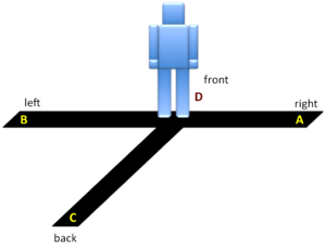 Lines Kodang