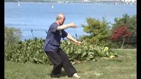 Taijiquan 88 forms 88式太极拳 1 2