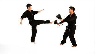 How to Do a Double Roundhouse Kick Taekwondo Training