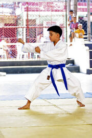 Young karateka performing Kūsankū-shō (Karate kata)