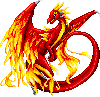 Phoenix Dragon female