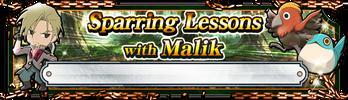 Key of Malik (Banner)