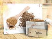 Talia-in-the-kitchen-flipbook-spice-rack-8