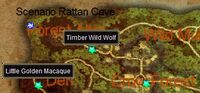Warrior on Tiger Mountain map