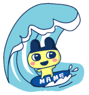 Mame surf