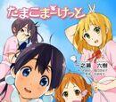Tamako Market (Light Novel)