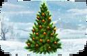 Gift image Christmas Tree