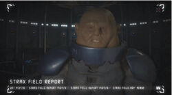 Strax Field Report A Glorious Day