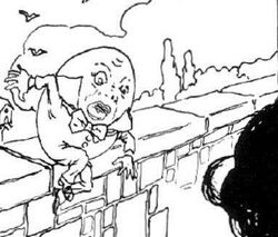 Fellow Travellers Humpty Dumpty Falls