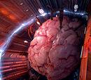 Ood Brain