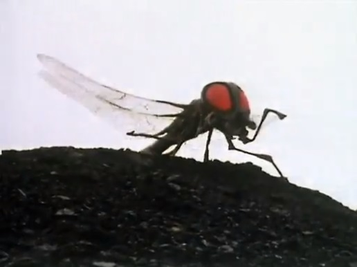 File:Giant fly Green Death.jpg