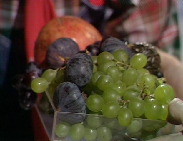 File:Grapes.jpg