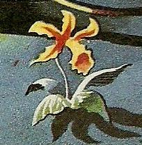 File:Flower on Skaro.jpg