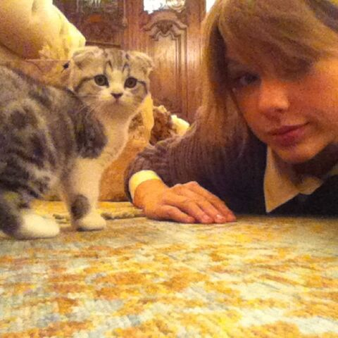 File:Taylor and Meredith.jpg