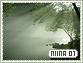 Niina-elements1