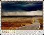 Shawnna-phenomena