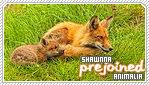 Shawnna-animalia b