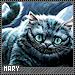 Mary-alias