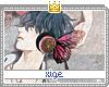 Xige-chivalry