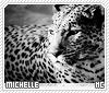Michelle2-animalia