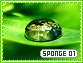 Sponge-elements1