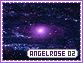 Angelrose-elements2
