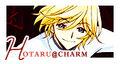 Hotaru-charm