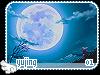 Yujing-shoutitoutloud1