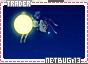Netbug-somagical13
