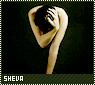 Sheva-novella