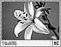 Yujing-discover