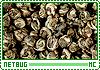 Netbug-zest