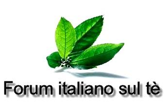 File:Forum-italiano-sul-te-logo.jpg