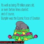 Dumplin cosmic force of creation