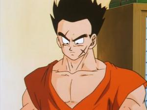 Yamcha at Goku's House