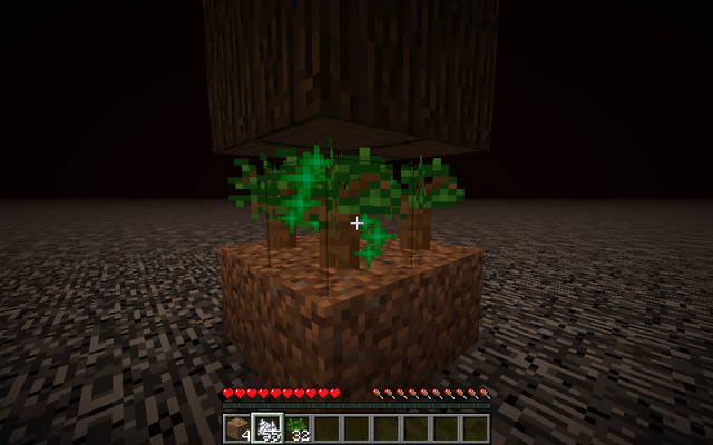 File:Growing Trees on the Roof of the Nether.png