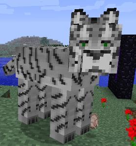 Minecraft Mo Creatures Wiki Big Cats