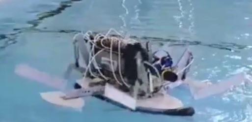 File:Lemming swim 2000.jpg