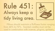 Rules-of-Robin-Rule-451