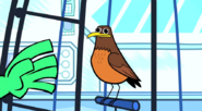 Teen Titans Go! Super Robin Preview - YouTube