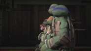 Turtles And April Meditating