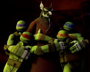 TMNT 2012 Splinter-34-