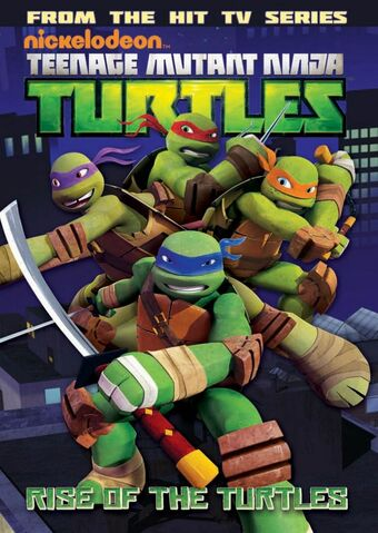 File:TMNT Animated Vol 1 cover.jpg